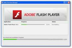 adobe flash player бесплатно и без регистрации